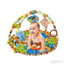 Gimnasio de Actividades Toys